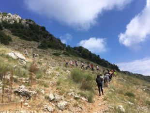 Jabal Moussa (3)