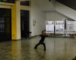 stage-danse-10