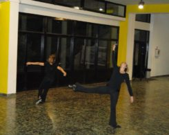 stage-danse-11