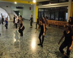 stage-danse-15