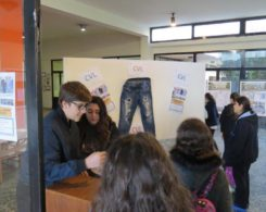 jeans dechires (7)