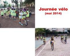 activités primaire 2014