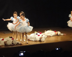 spectacle de ballet (6)