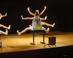 spectacle de ballet (9)