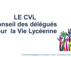 CVL (1)
