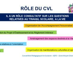 CVL (3)