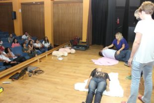 formation defibrilateur (5)