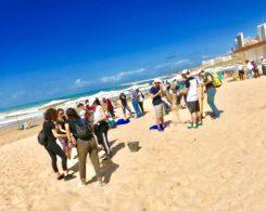 plage propre (11)