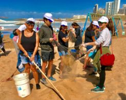 plage propre (3)