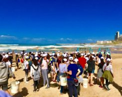 plage propre (7)