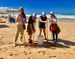 plage propre (9)
