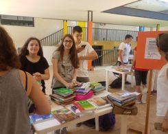 Foire aux livres (3)