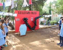 SDLFM GL (19)