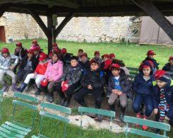 voyage des CM1B en Bourgogne (4)