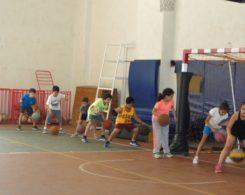 basket1-1