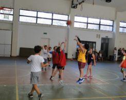 basket1-3