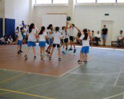 basket2-2