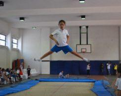 gym-artistique-2
