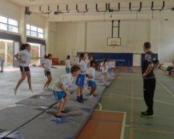 gym-artistique-4