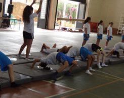 gym-artistique-5