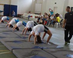 gym-artistique-6