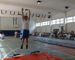 gym-artistique-7