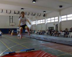 gym-artistique-8