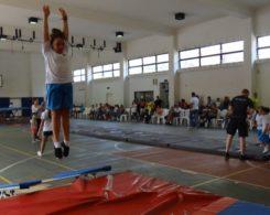 gym-artistique-9