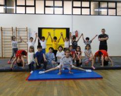 gym-artistique2-12