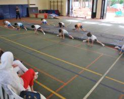 gym-artistique2-2