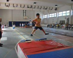 gym-artistique2-4