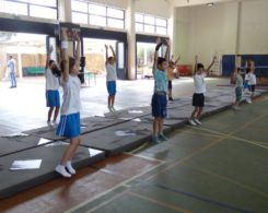 gym-artistique2-6