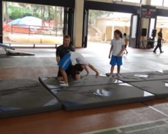gym-artistique2-8