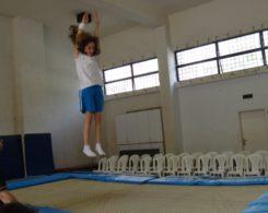 gym-artistique2-9