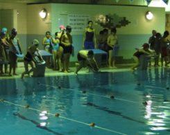 natation-1
