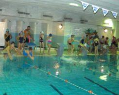 natation-4