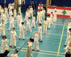 taekwondo2-1