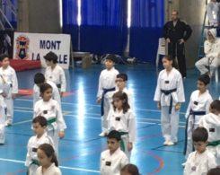 taekwondo2-2
