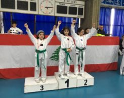 taekwondo2-4