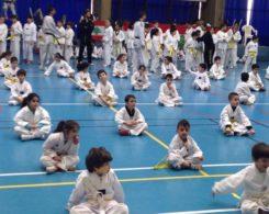 taekwondo2-7