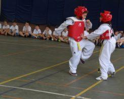 taekwondo3-1