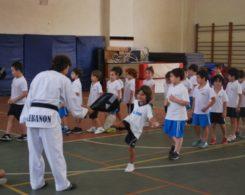 taekwondo3-11