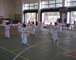taekwondo3-13