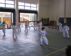 taekwondo3-14