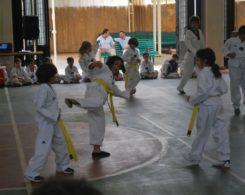 taekwondo3-15