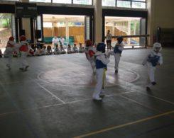 taekwondo3-16