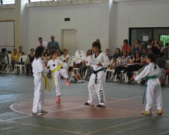 taekwondo3-17