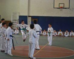 taekwondo3-18