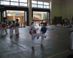 taekwondo3-19