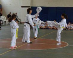 taekwondo3-2